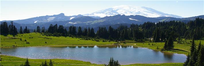 <畅玩西雅图>西雅图奥林匹克国家公园、德国村、雷尼尔火山3日游分享到